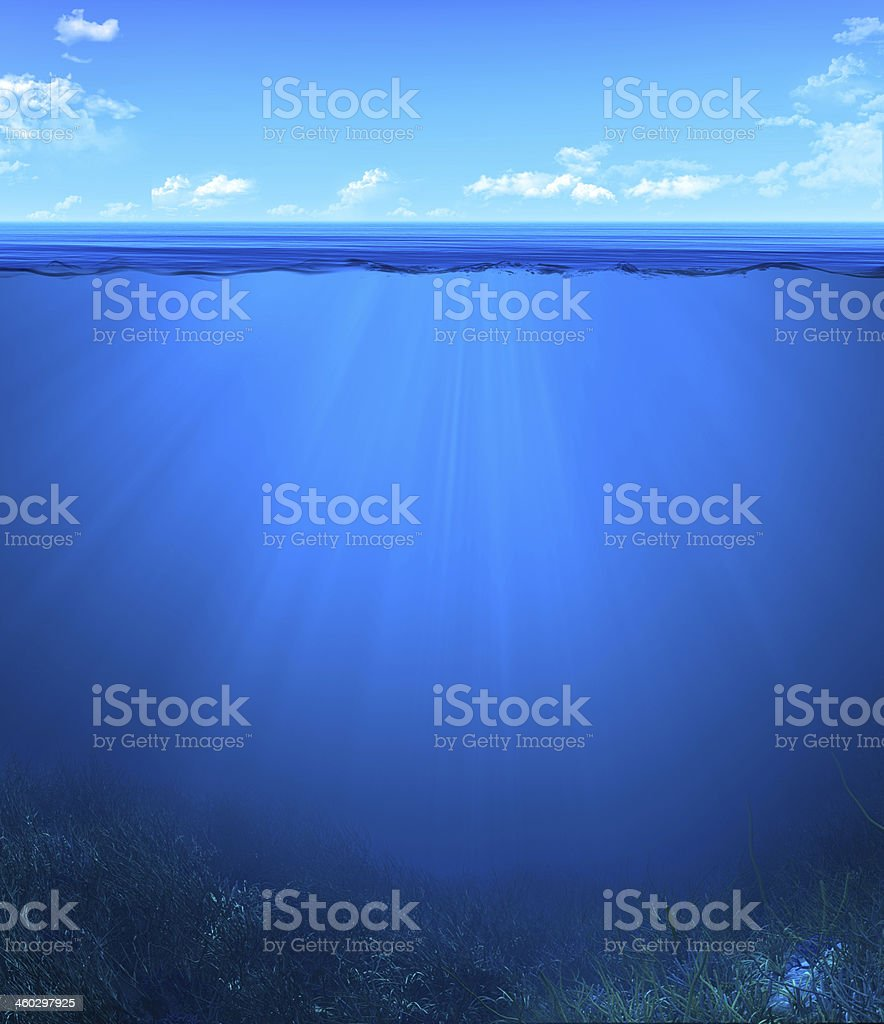 underwater landscape stock photo