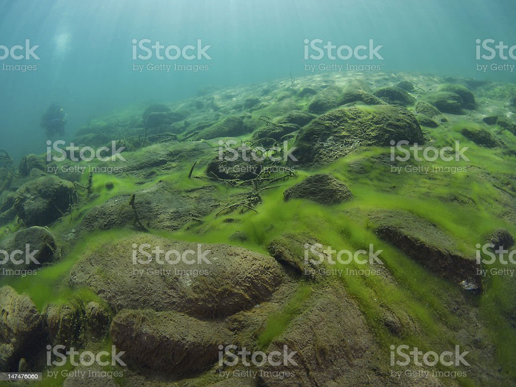 Underwater landscape with scuba diver royalty-free stock photo