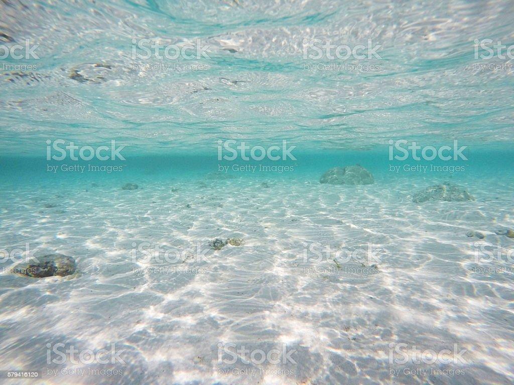 Underwater Maldives stock photo