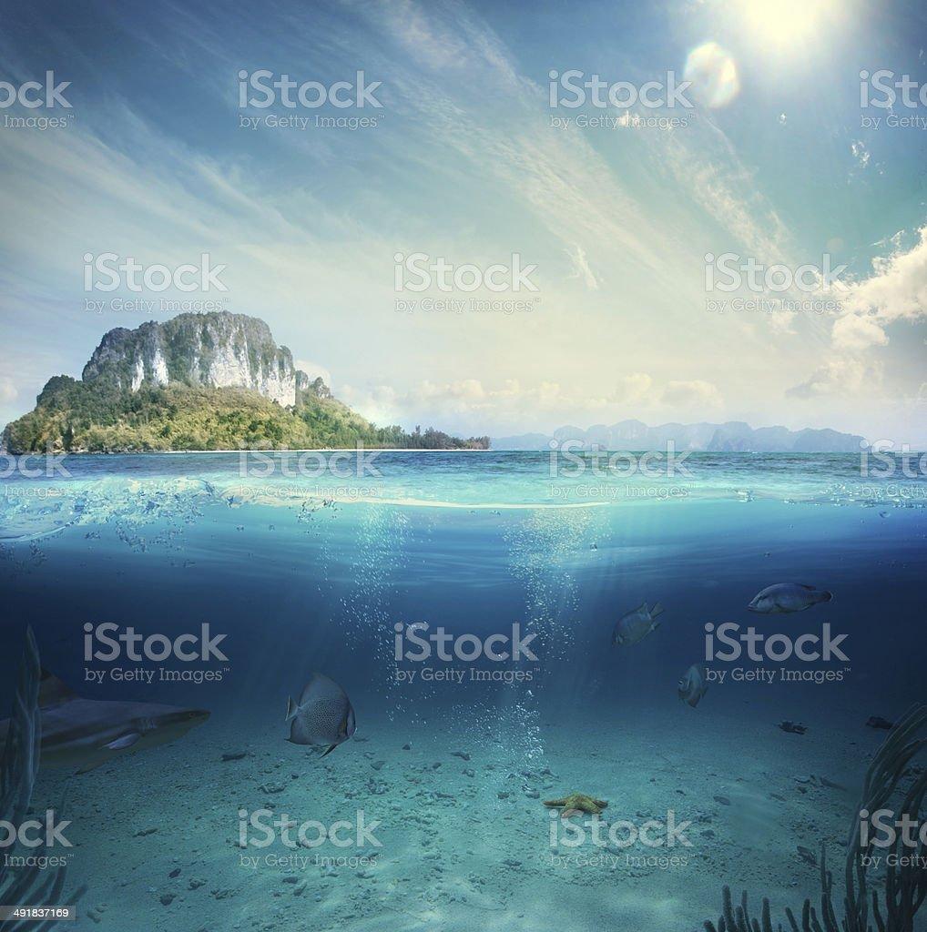 underwater part stock photo