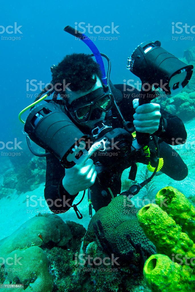 underwater photographer photographing coral royalty-free stock photo