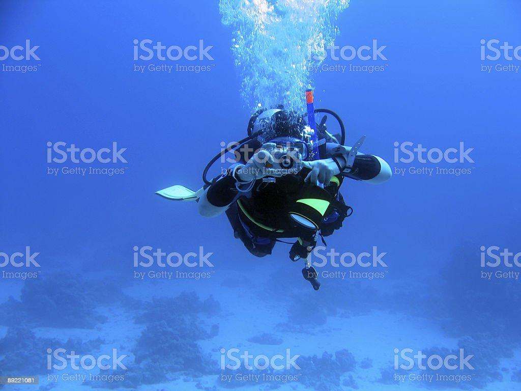 underwater photographer royalty-free stock photo