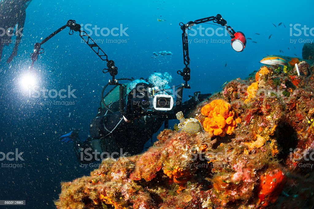 Underwater photographer  Scuba divers photographing  coral reef   Sea life Nudibranch stock photo