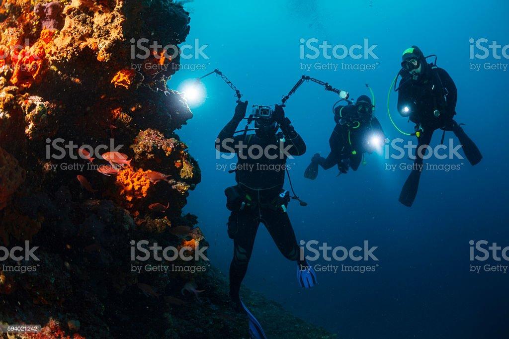 Underwater photographer  Scuba divers photographing  Explore coral reef   Sea life stock photo
