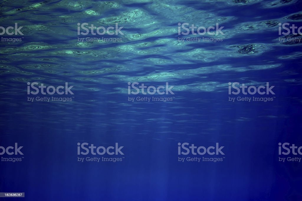 Underwater Reflections royalty-free stock photo