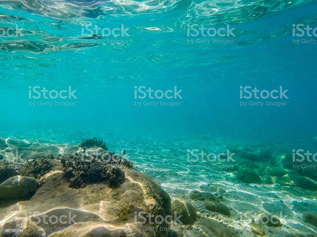 Underwater Scene 8 stock photo
