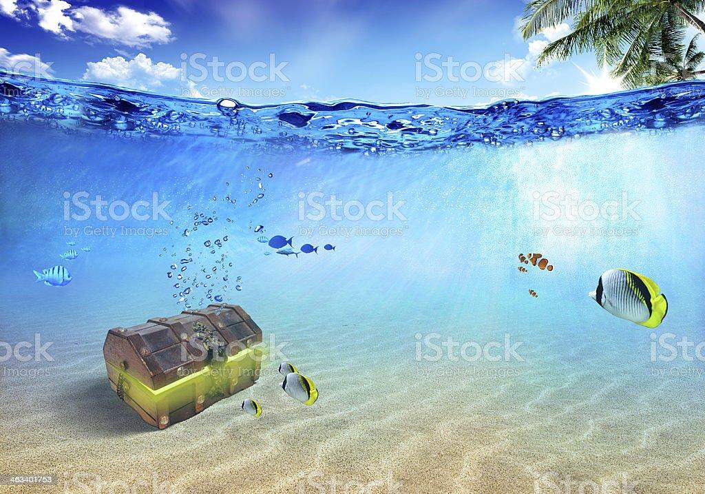Underwater scene stock photo