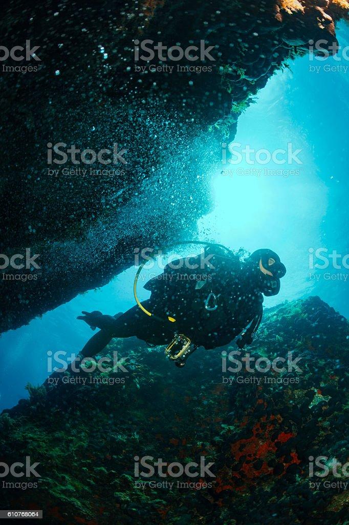 Underwater  Scuba diving   Explore reef   Sea life  Team scuba divers stock photo