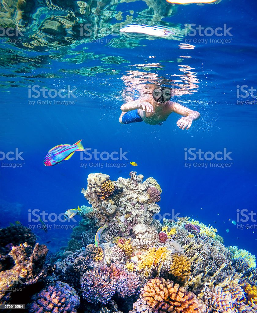 Underwater shoot of a young boy snorkeling in red sea stock photo