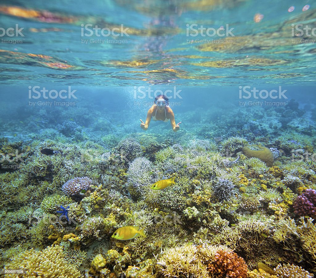 Underwater shot girls on background  beautiful coral reef stock photo