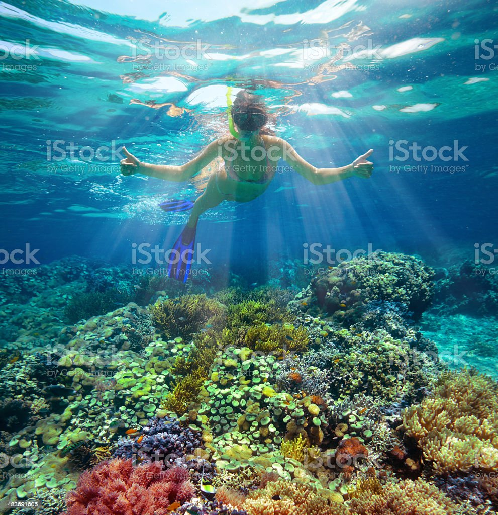 Underwater shot of a woman snorkeling in the sun stock photo