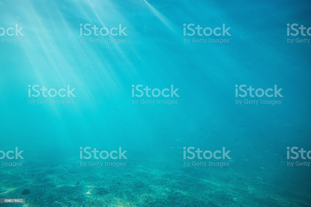 Underwater shot with sunrays and fish in deep tropical sea stock photo