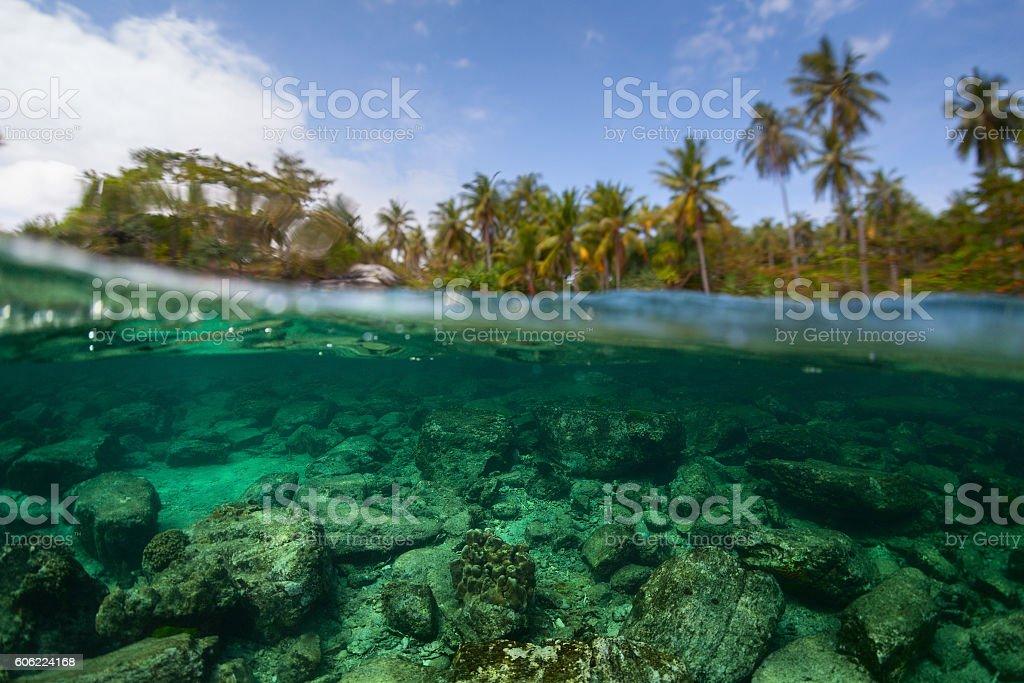 Underwater split shot of the sea rocky bottom stock photo