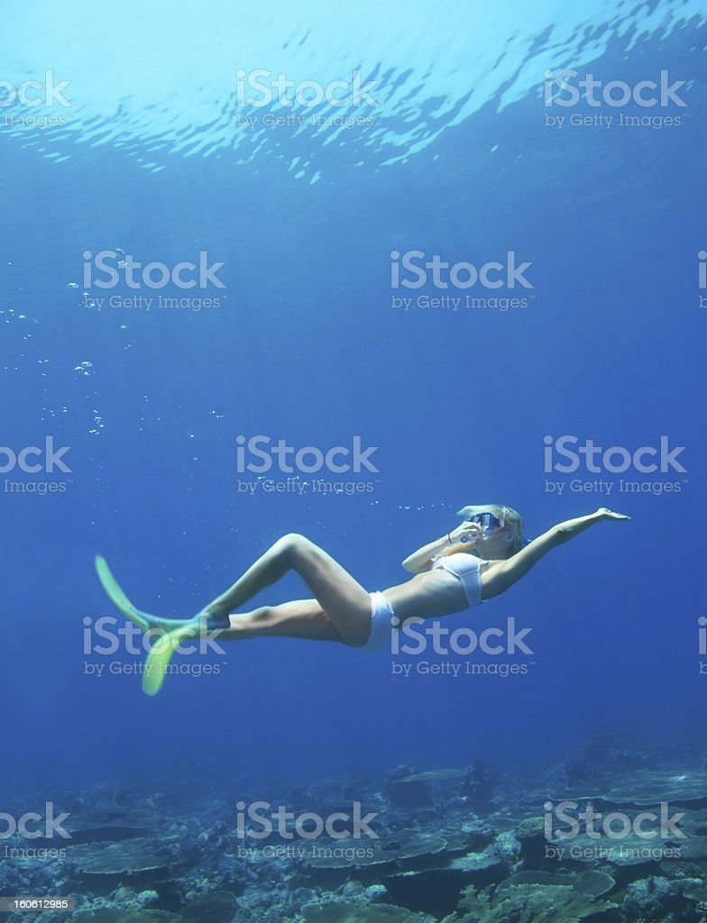 Underwater tranquility royalty-free stock photo