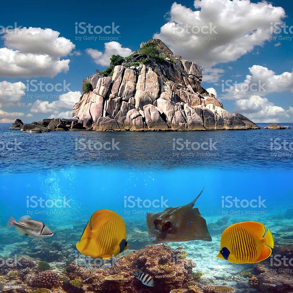Underwater tropical sea view stock photo