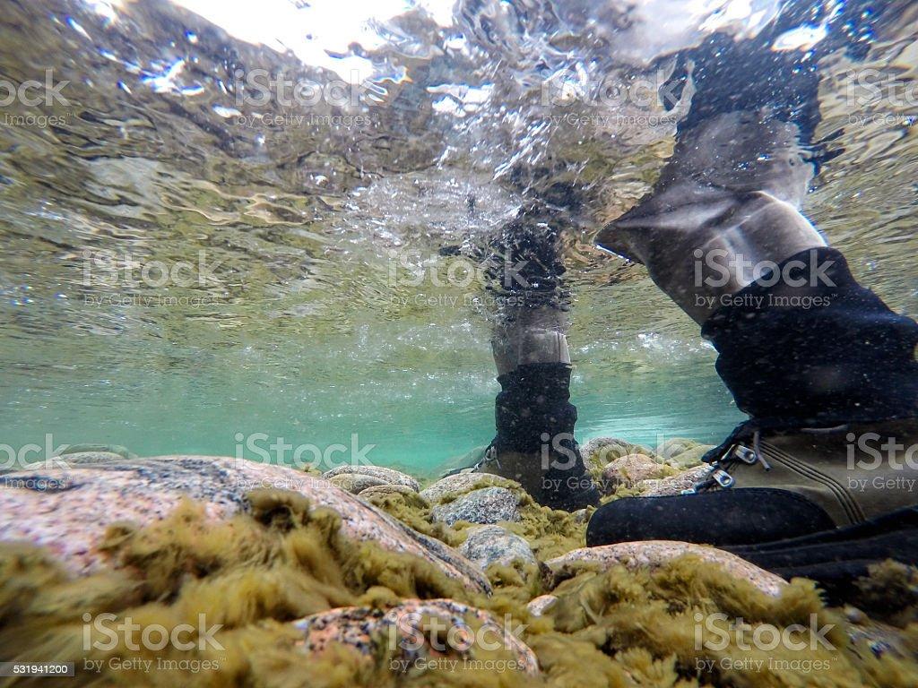 Underwater View Fly Fisherman stock photo