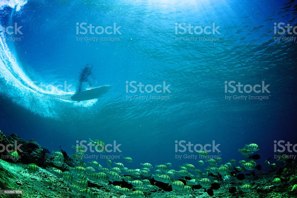Underwater view of surfer through the wave with tropical fish stock photo