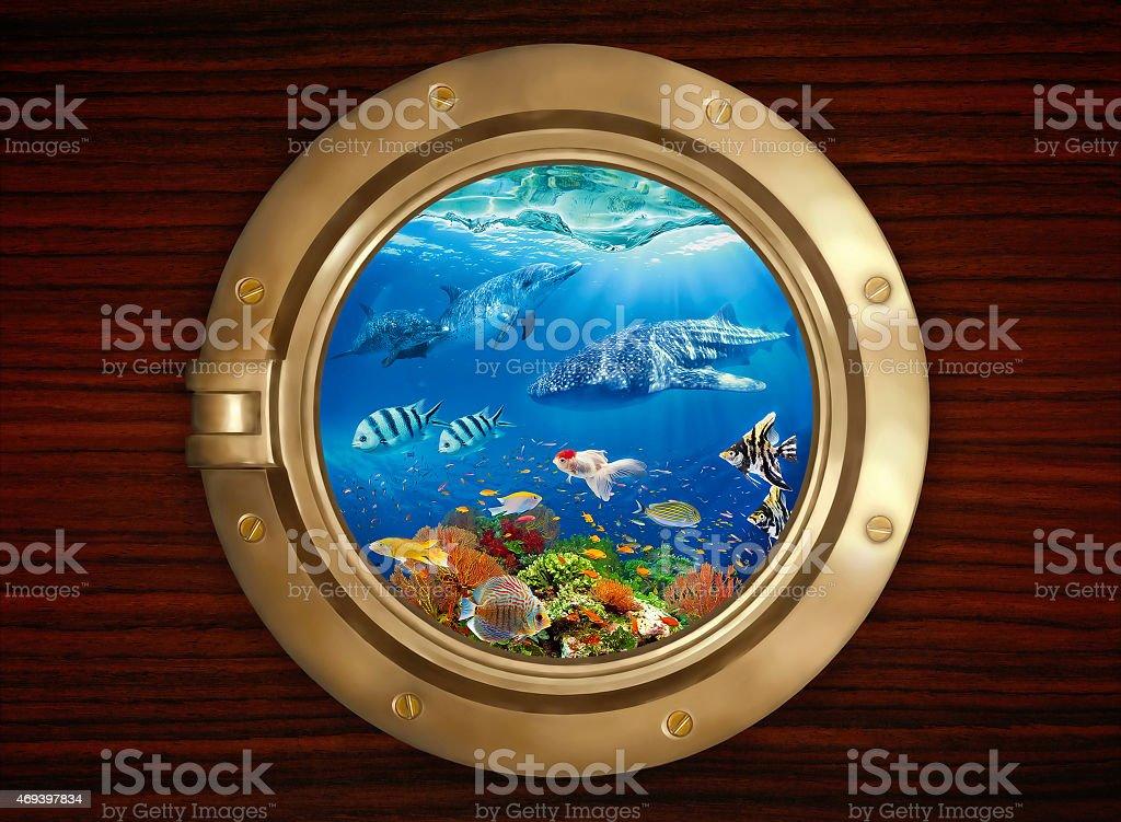 Underwater world viewed through the porthole stock photo