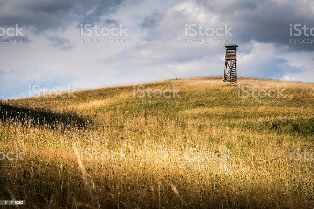 Undulating fields stock photo