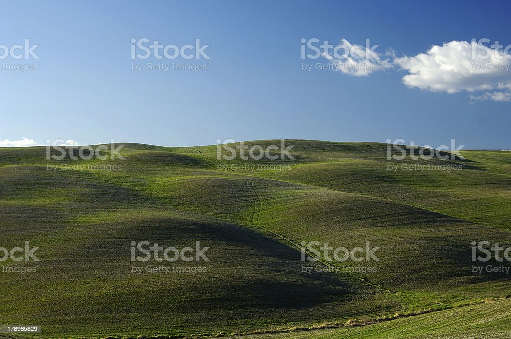 undulating landscape in tuscany royalty-free stock photo