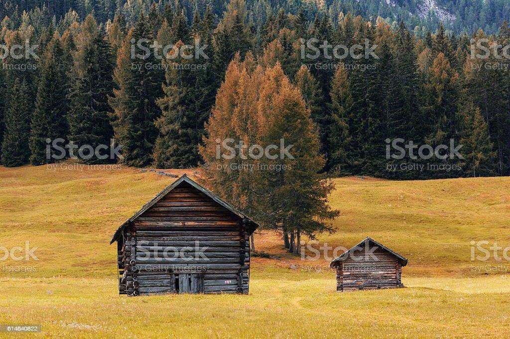 Unesco World Heritage site Dolomiti, Italy Foliage style stock photo