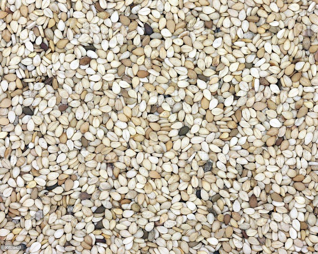 unhulled sesame seeds stock photo