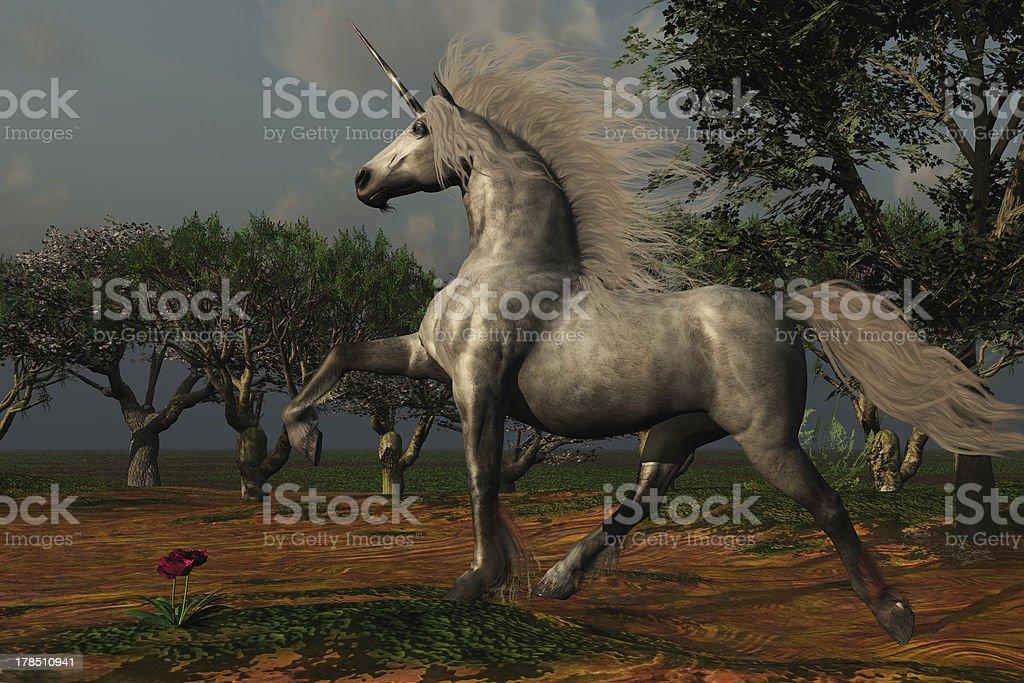 Unicorn Forest royalty-free stock photo