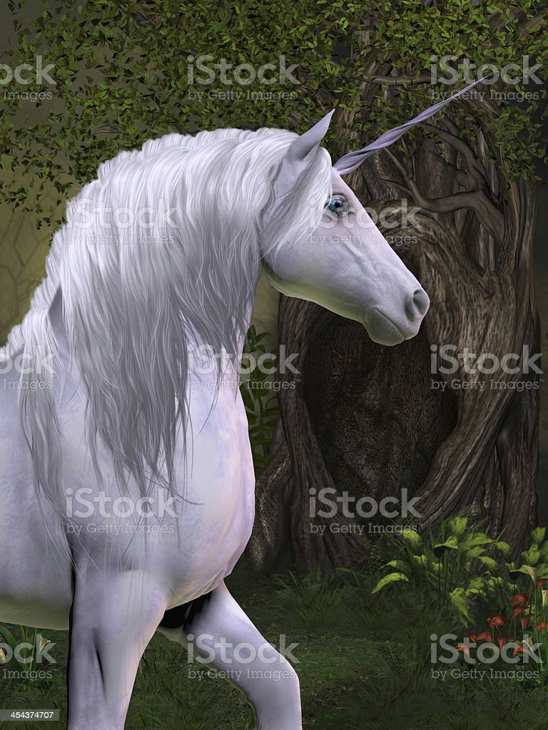 Unicorn Horse stock photo