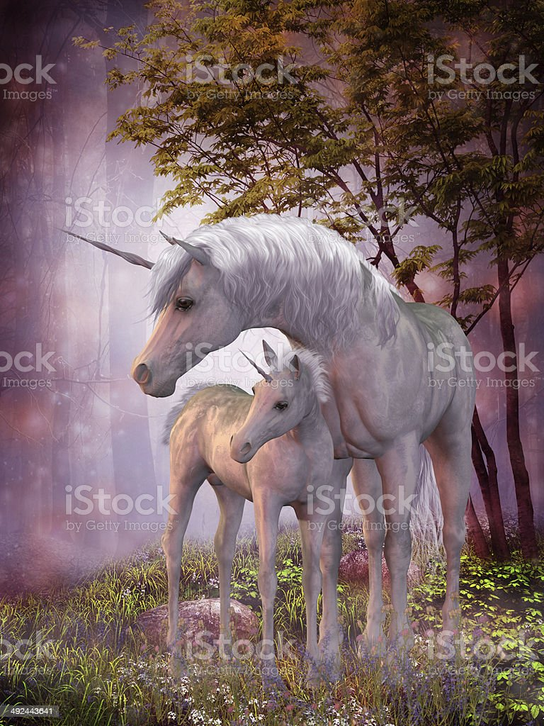 Unicorn Mare and Foal stock photo