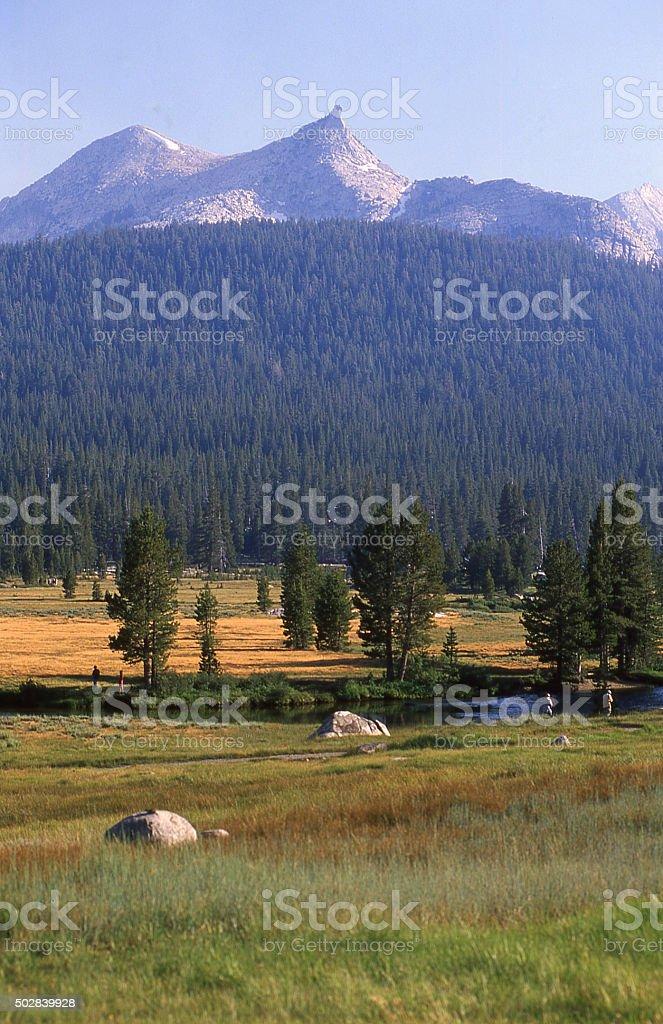 Unicorn Peak over Tuolumne Meadows in Yosenite National Park California stock photo