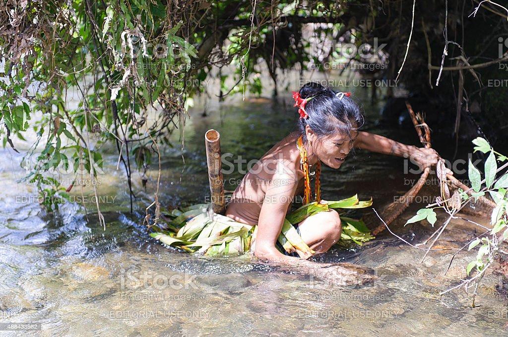 Unidentified women of Mentawai catching a fish  using a net. stock photo