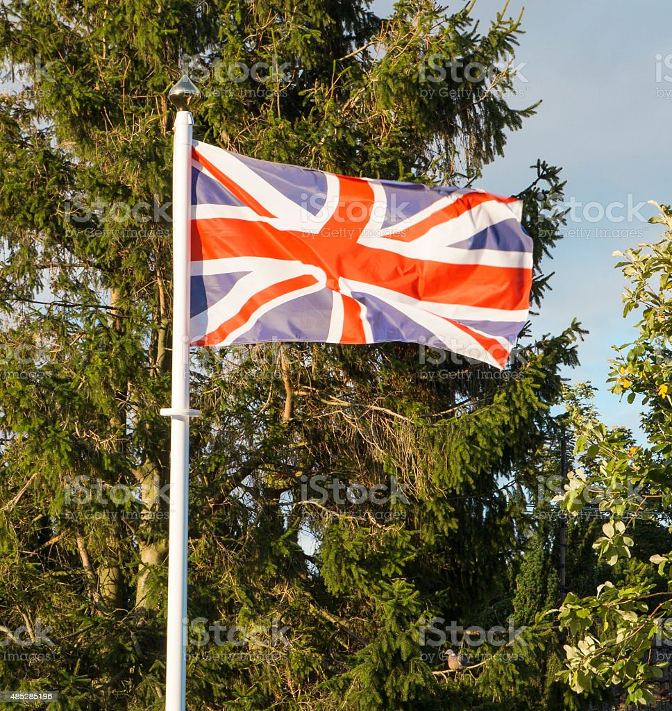 Union Jack Flag flying in front of trees royalty-free stock photo
