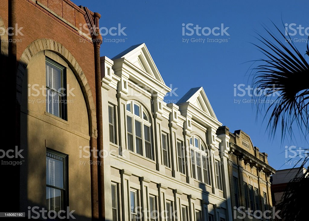 Unique Architecture and Palm Trees royalty-free stock photo