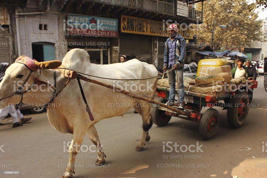 Unique Bullock Cart royalty-free stock photo