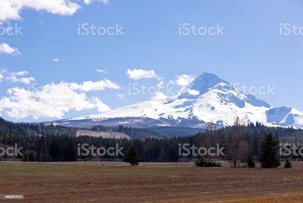Unique Lyric of nature of northwest stock photo