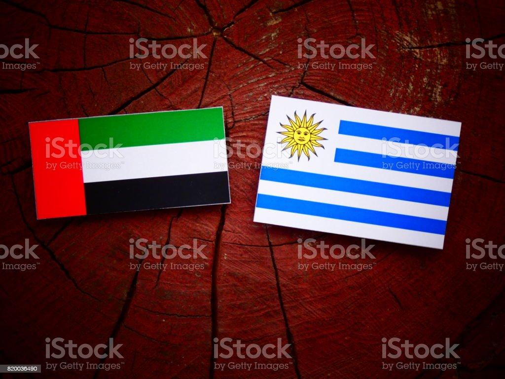 United Arab Emirates flag with Uruguaian flag on a tree stump isolated stock photo