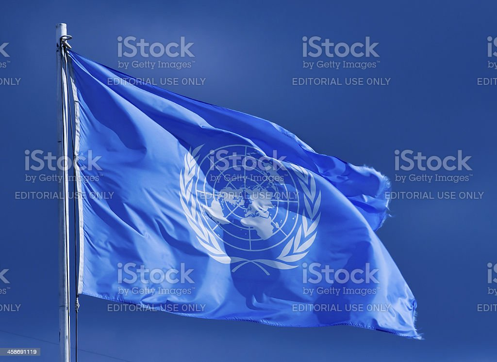 United Nations flag. stock photo