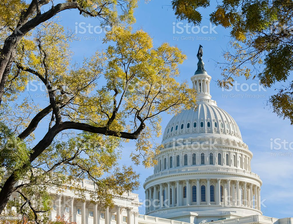 United States Capitol Dome Bordered by Trees in Autumn stock photo