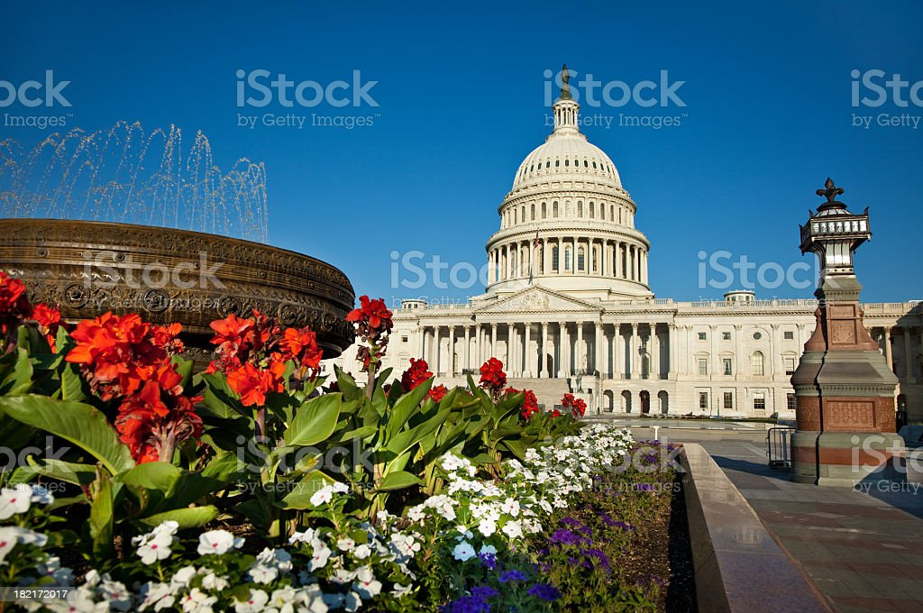 United States Capitol with Flowers in the Foreground royalty-free stock photo