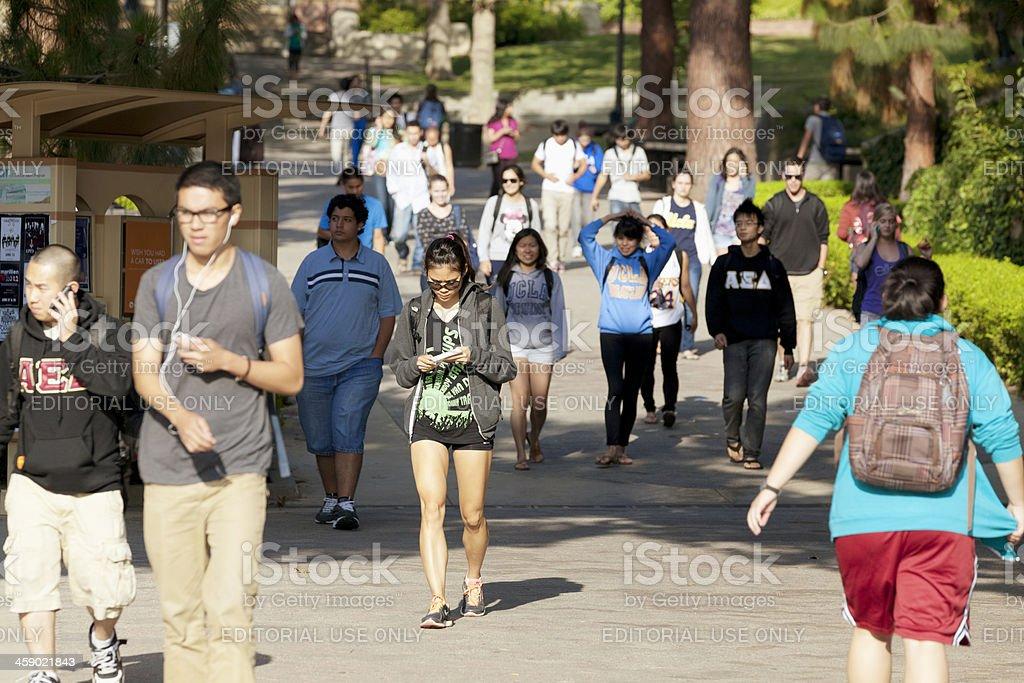 University of California, Los Angeles royalty-free stock photo