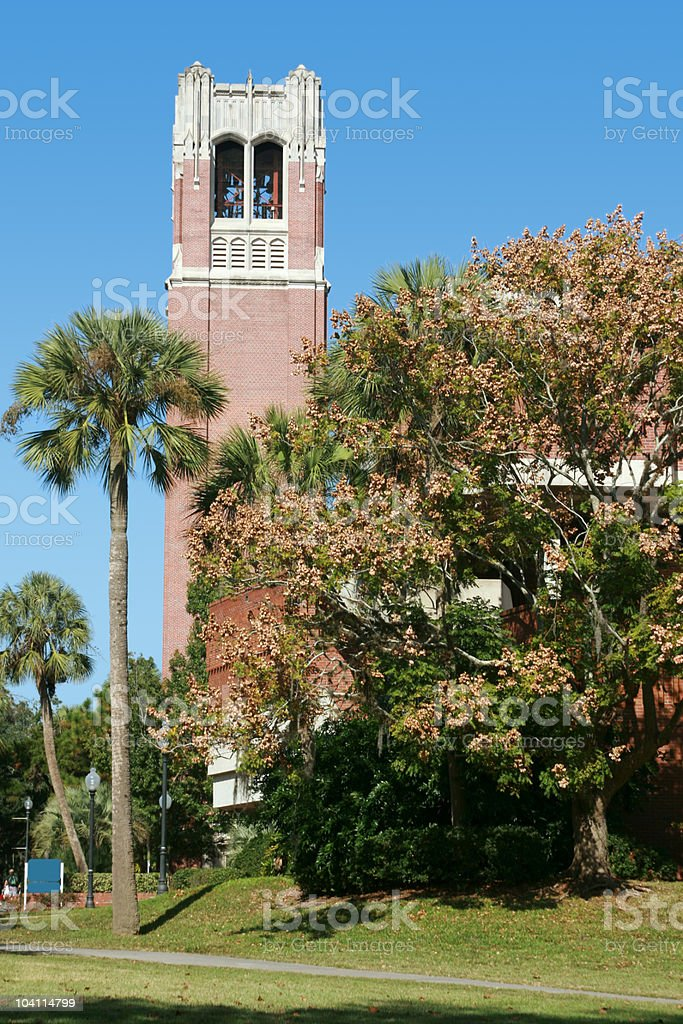 University of Florida Century Tower surrounded by trees stock photo