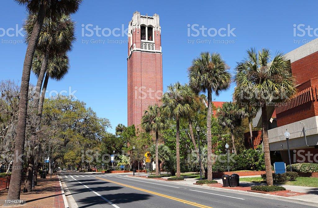 University of Florida stock photo