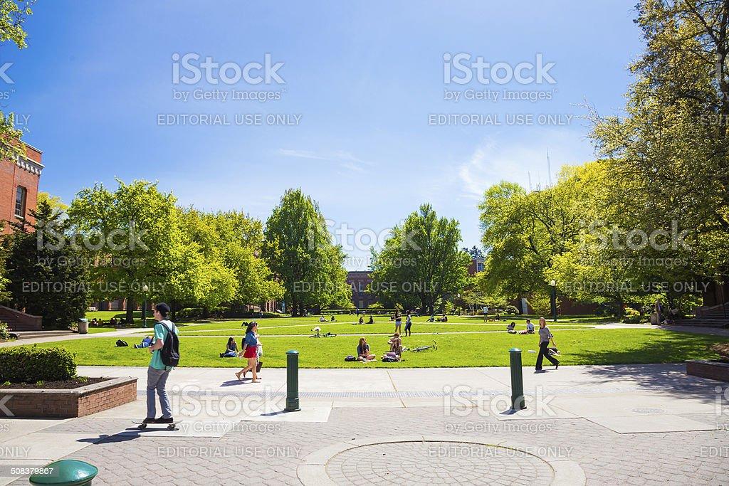 University of Oregon Campus Grass Plaza stock photo