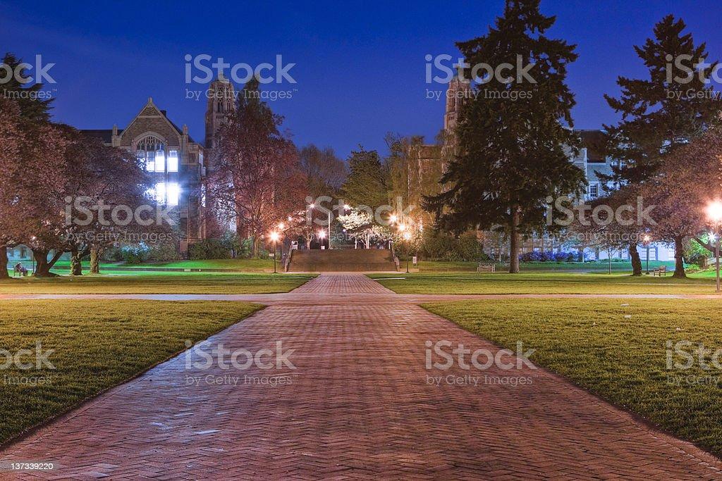 University of Washington Quad at Night stock photo