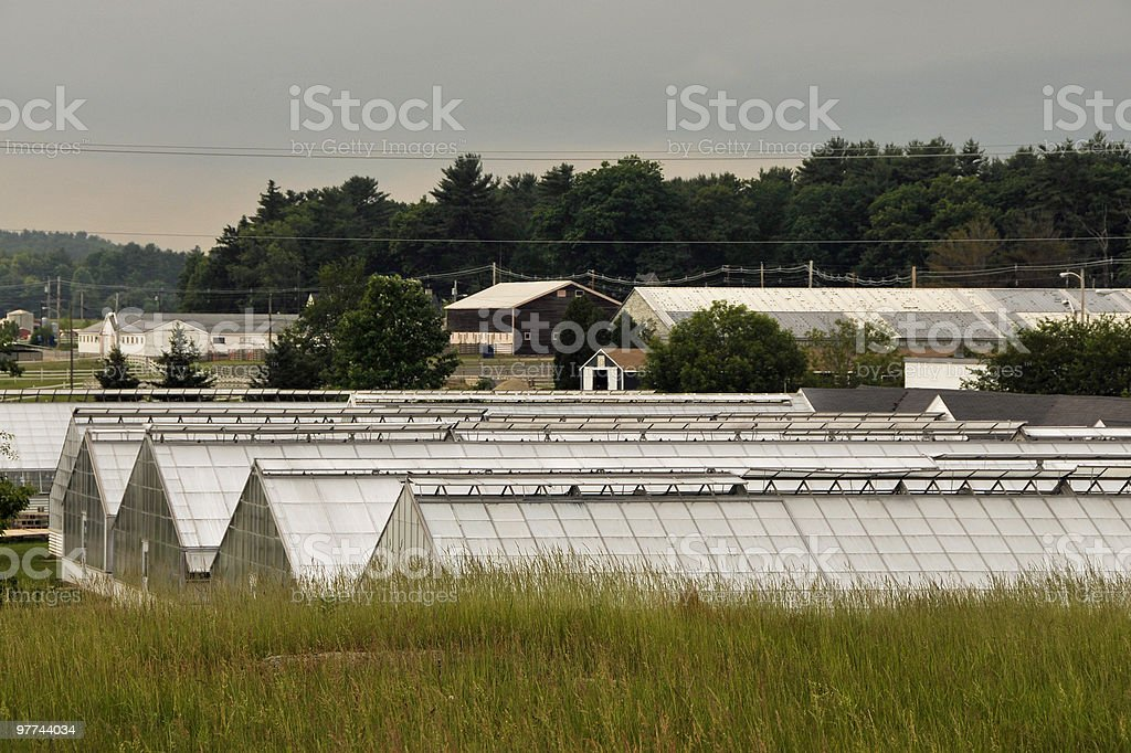 University Research Greenhouses royalty-free stock photo