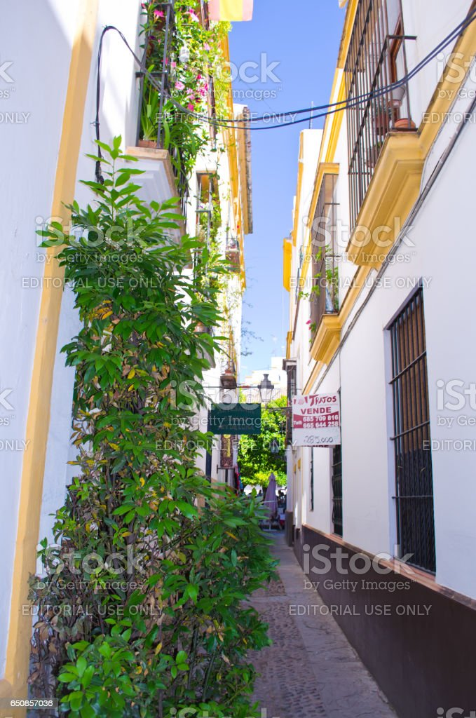 SEVILLE, SPAIN - JUNE 2, 2013: Unknown tourists on city streets. City architecture. Seville — the city in the south of Spain with the population of 700 thousand inhabitants. stock photo