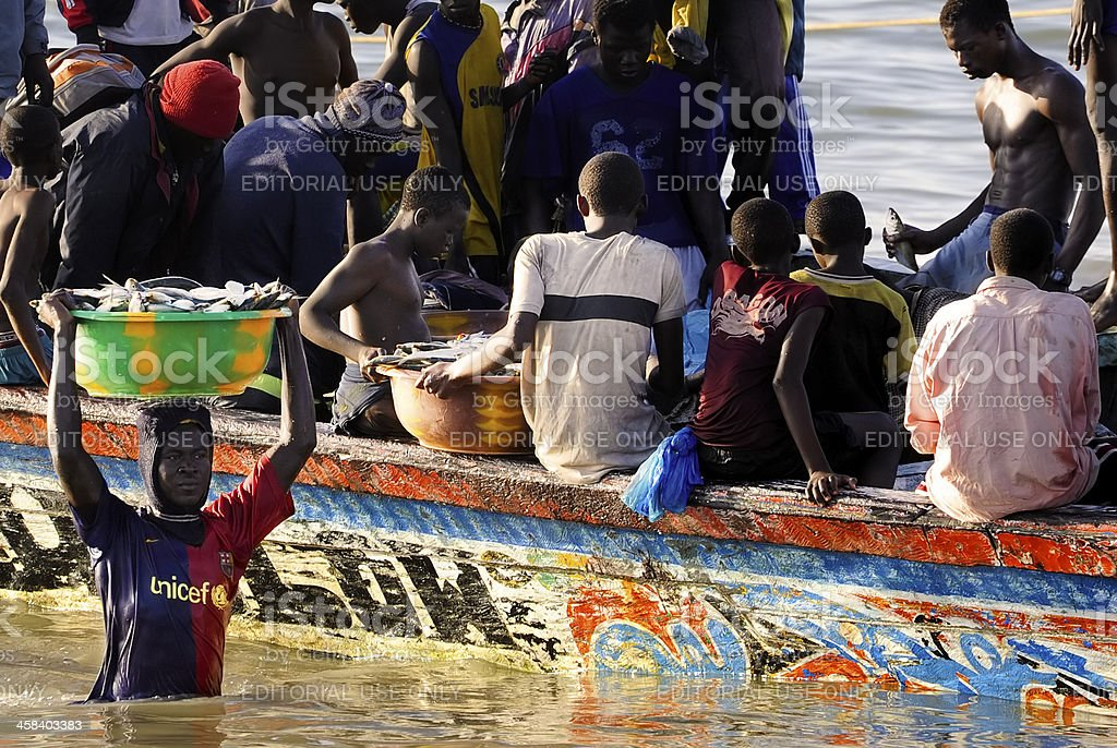Unloading a fishing boat in Gambia, Africa royalty-free stock photo