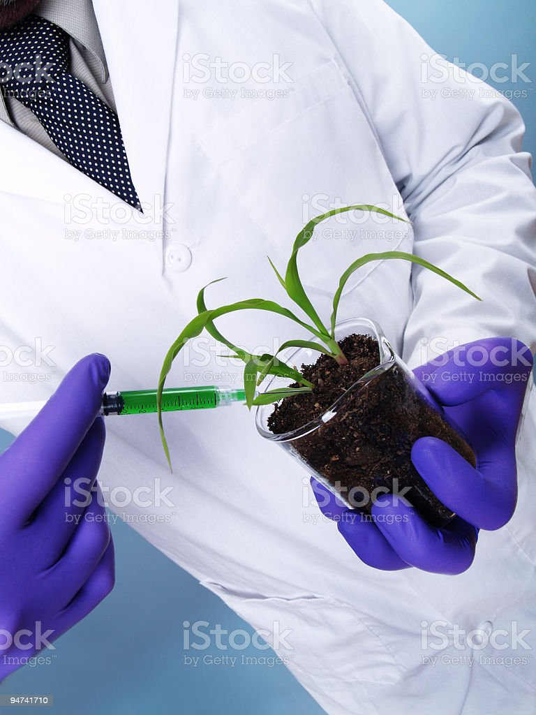 Unnatural Growth Spurt royalty-free stock photo