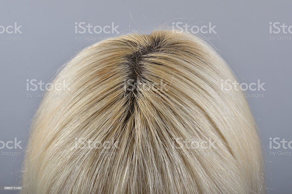Unpainted regrow roots of a woman's blond  head stock photo