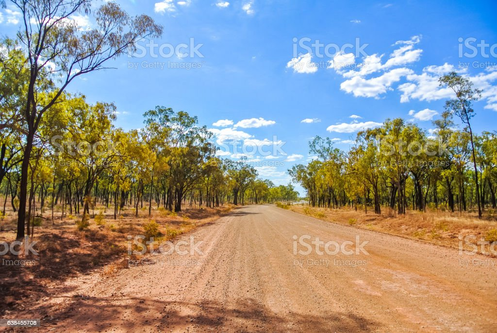 Unpaved dirt road among eucalyptus trees in remote Australian outback stock photo